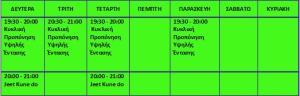 Προσωρινό Πρόγραμμα Αυτοοργανωμένου χώρου ενασχόλησης με το σώμα 2014-2015