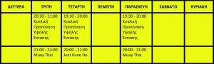 Αναθεώρηση Προγράμματος Αυτοοργανωμένου χώρου ενασχόλησης με το σώμα 2014-2015